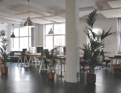 Oficinas: tendencias en construcción